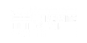 partenaire institutionnel hublo festival 2019 - Université de Lyon